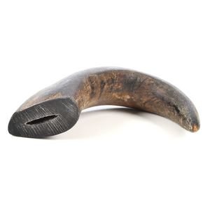 QT Dog Water Buffalo Horn