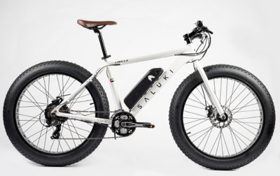 Ebikes in the Sand with Driven MBC