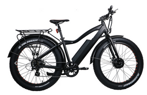 All Wheel Drive Ebike Fat tyre