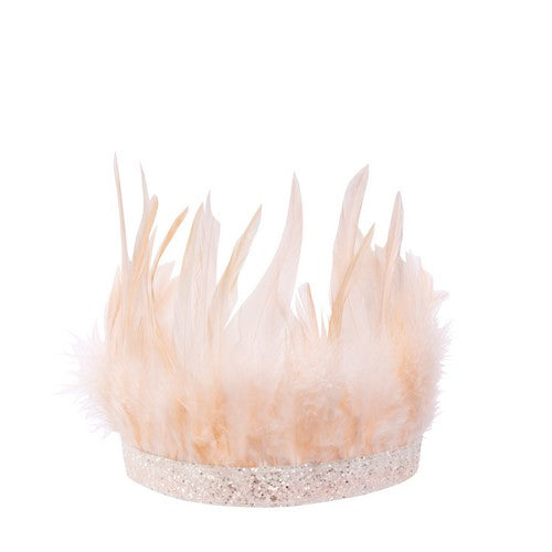Party Crown Pink Feather