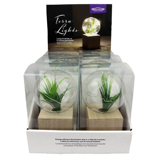 Wholesale Terra Lights Displayer of 6