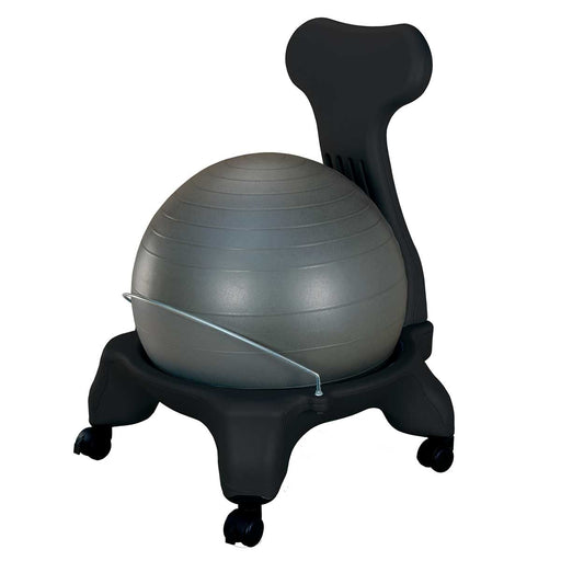 Wholesale Fitness Ball Chair with Back Rest