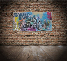 Load image into Gallery viewer, Harley