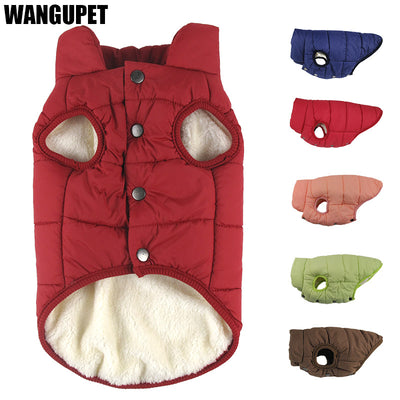 Winter coat for dogs