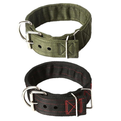 Large Dog Hound  Collar