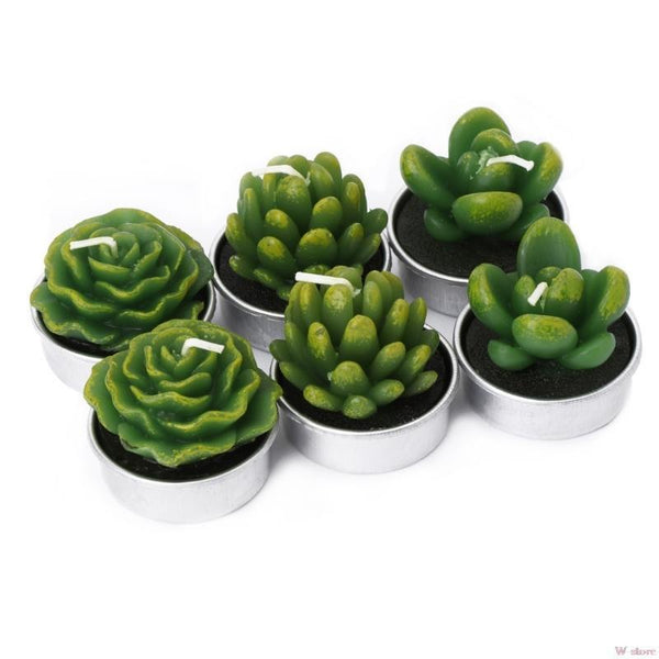 Bougies cactus (12Pcs) TATOUMI