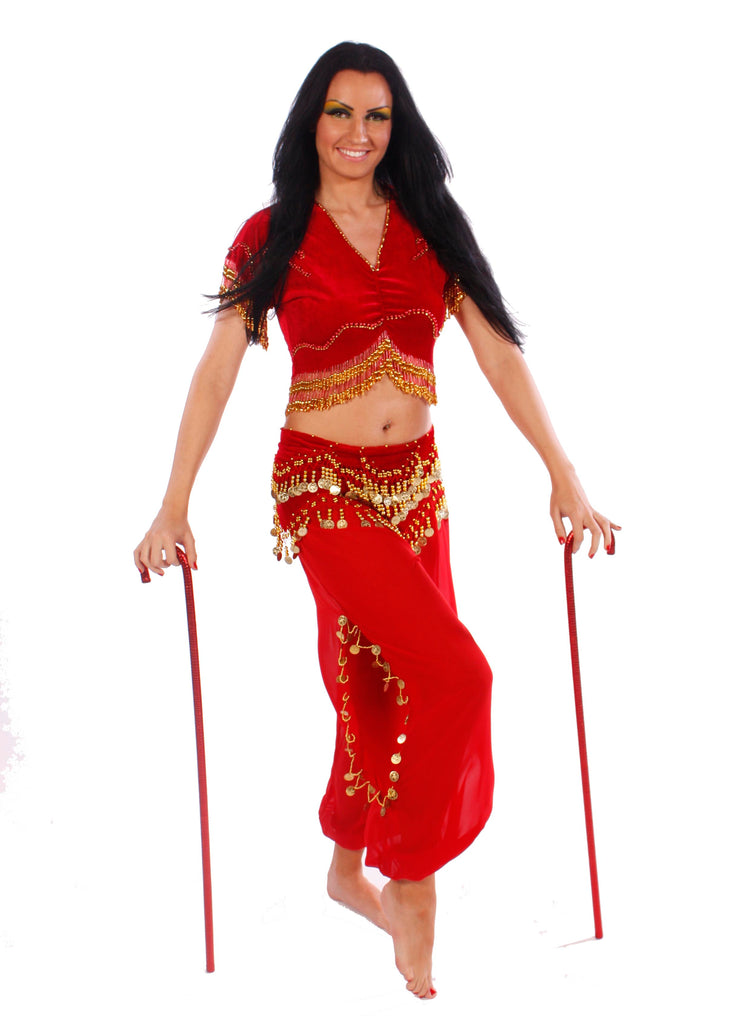 Belly Dance Top & Harem Pants Costume Set