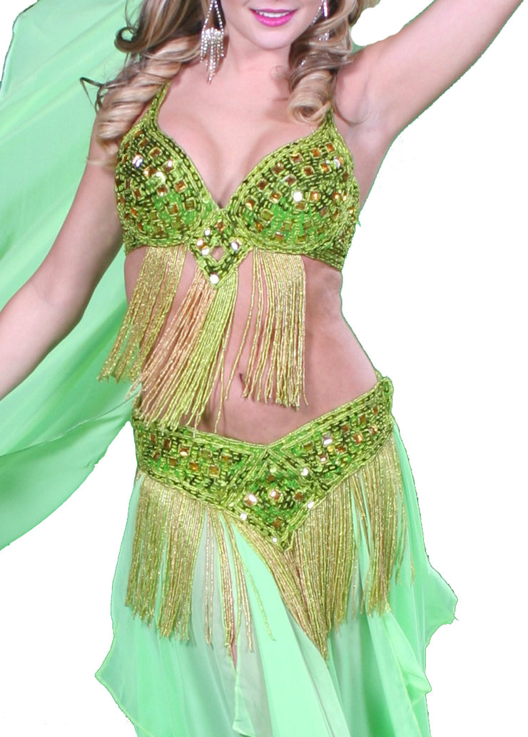 Belly Dance Professional Bra & Belt Costume Set