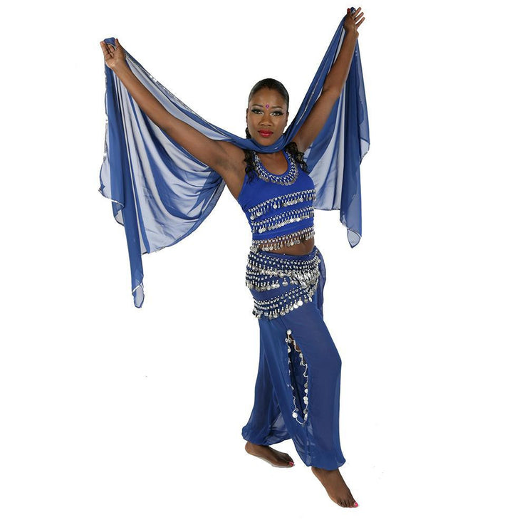 Belly Dance Chiffon Harem Pants, Top, Hip Scarf & Veil Costume Set | FESTIVAL FLAIR