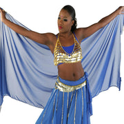 Belly Dance Coined Bra | GRECIAN COINS