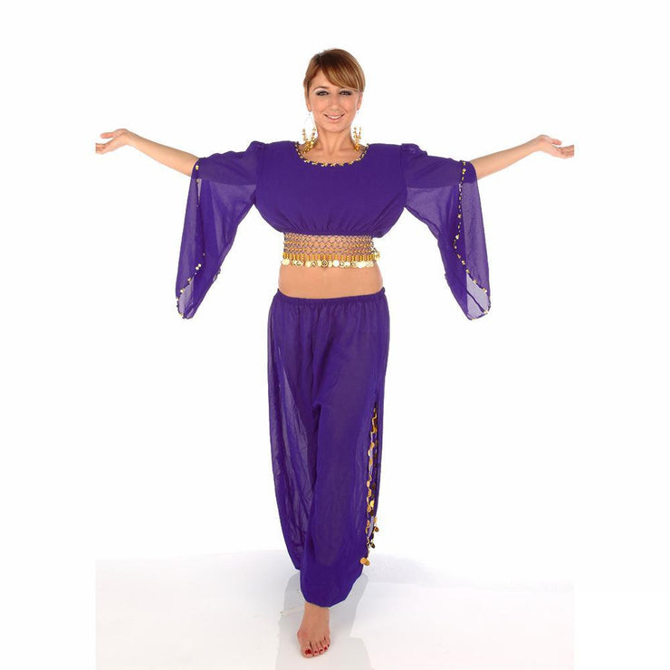 Belly Dance Harem Pant, Hip Scarf, & Bell Sleeve Top Costume Set | SURREAL