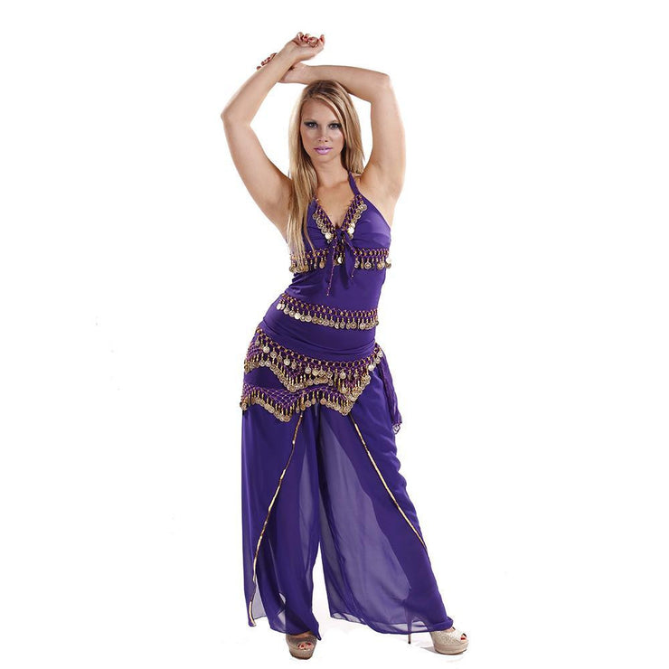 Belly Dance Lycra Top, Chiffon Harem Pants, & Hip Scarf Costume Set | ADAASANIA