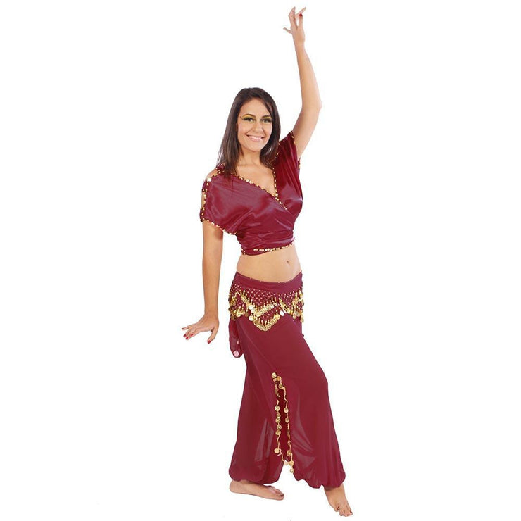Belly Dance Satin Top, Chiffon Harem Pants, & Hip Scarf Costume Set | SHINING SHOWCASE