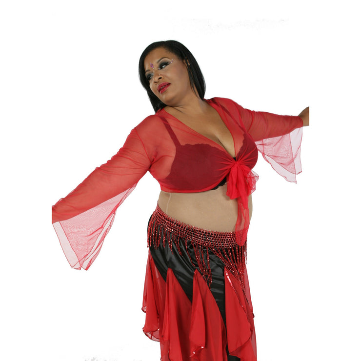 Belly Dance Sheer Chiffon Choli Top