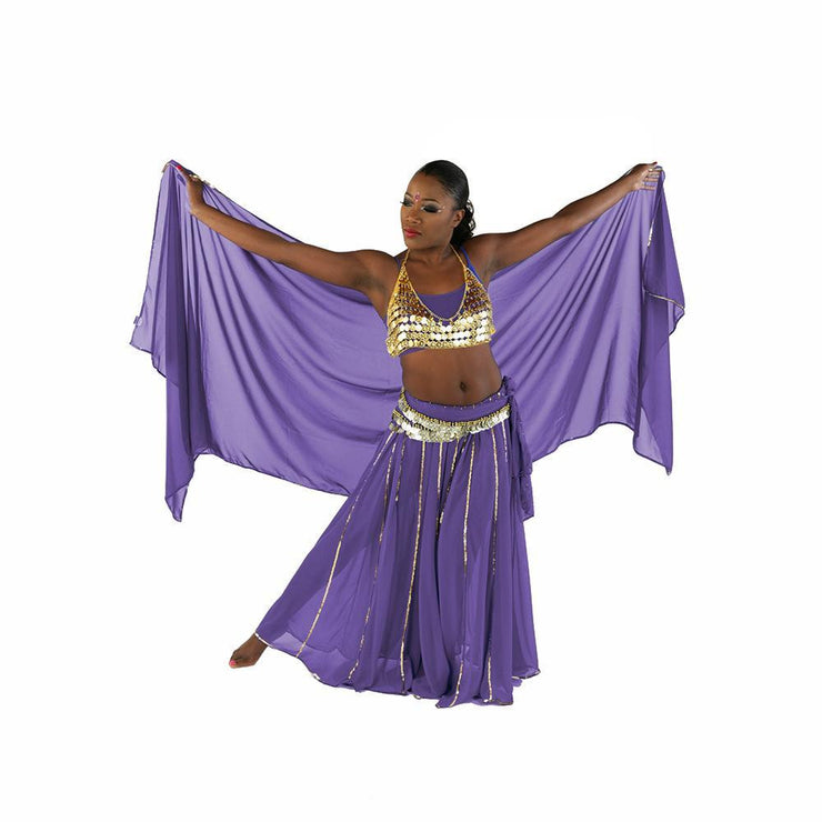 Belly Dance Skirt, Bra, Veil & Hip Scarf Costume Set | STARGAZER