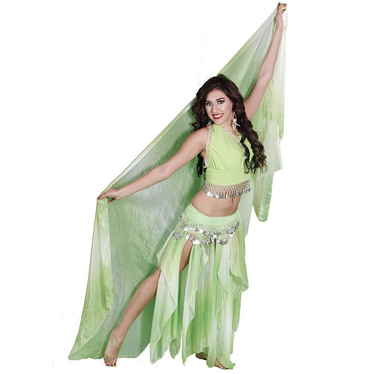 Belly Dance Skirt, Top, Veil, & Hip Scarf Costume Set | RAQS AND ROLL