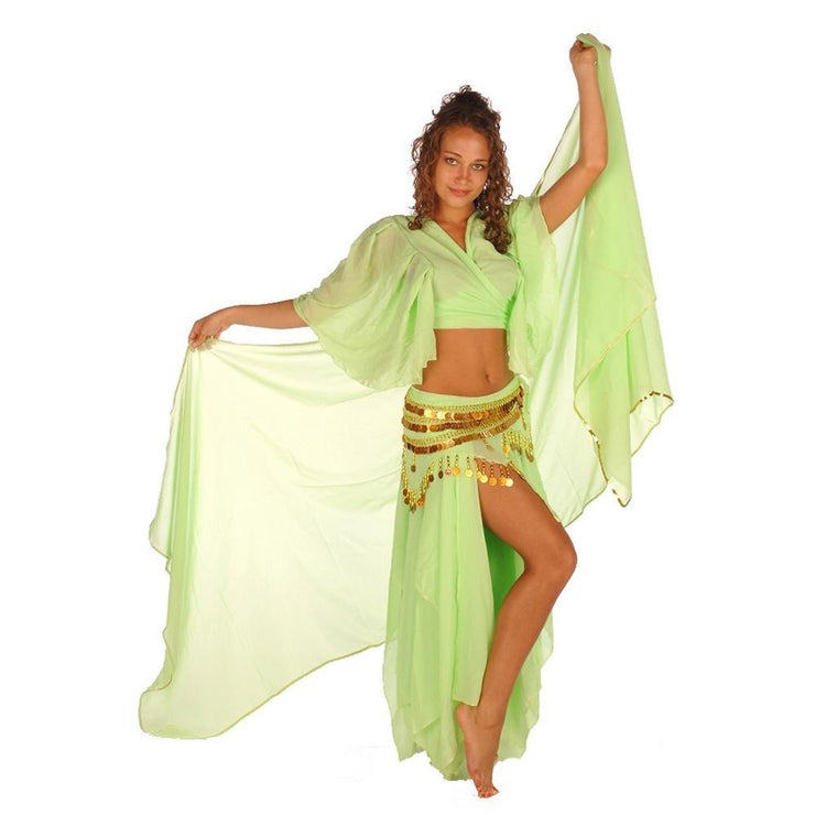 Belly Dance Skirt, Top, Veil, & Hip Scarf Costume Set | SERENITY SERENADE