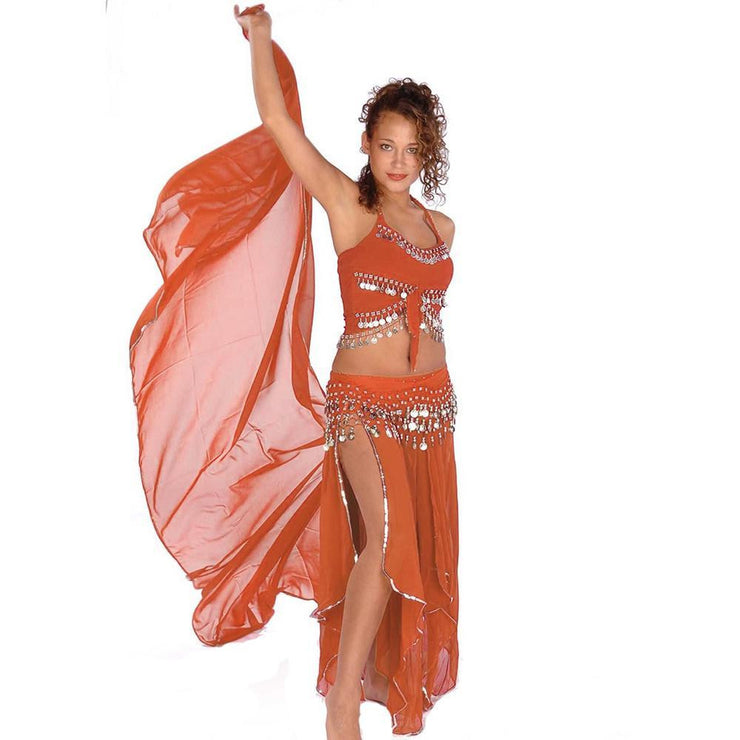 Belly Dance Skirt, Veil, Tank Top, & Hip Scarf Costume Set | TREMENDOUS