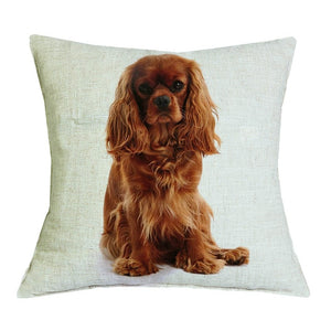 Cavalier King Decor Pillows