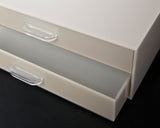 Double Drawer Makeup Organizer