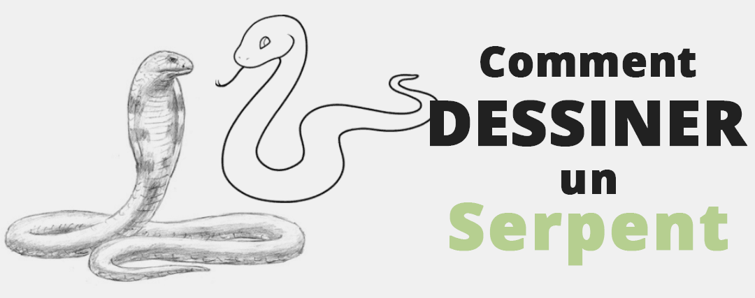 Comment Dessiner un Serpent ?