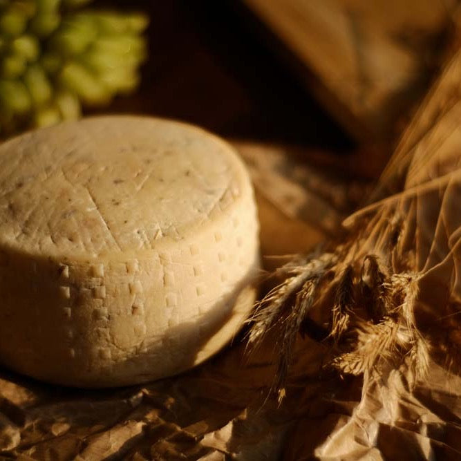 Formaggio º8T - Natural Rind Cheese with Truffle Mushrooms(200g)