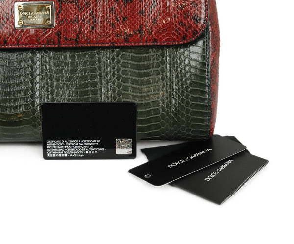 Dolce & Gabbana Red Green Brown Python Satchel Handbag 11