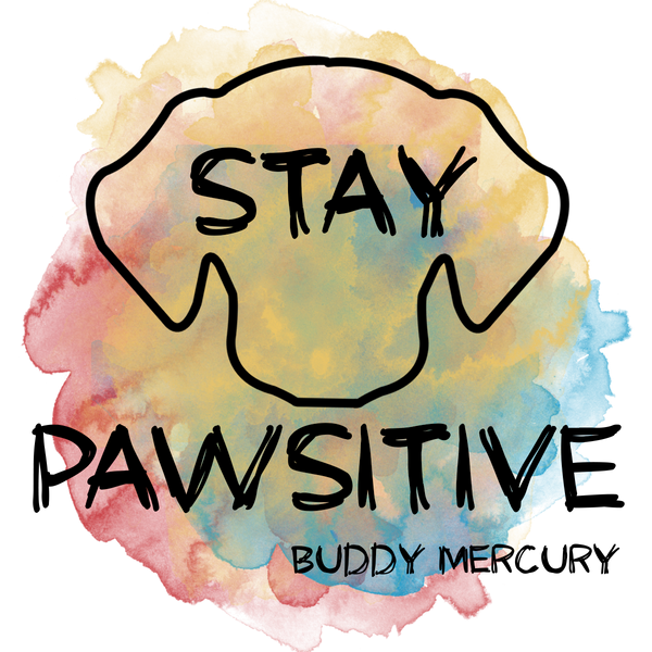 STAY PAWSITIVE CONTEST!