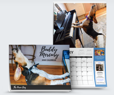 buddy mercury 2020 calendar