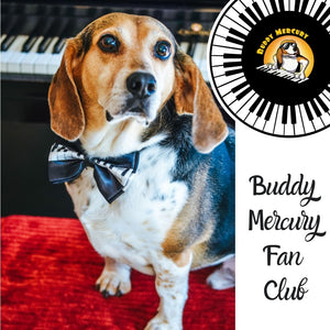 New! Buddy Mercury Fan Club Membership (Monthly)