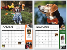Load image into Gallery viewer, Buddy Mercury 2021 Calendar