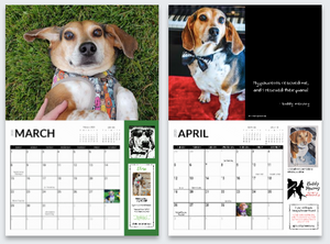 Buddy Mercury 2020 Calendar - International orders