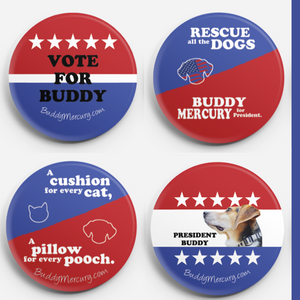 Vote for Buddy Bundle