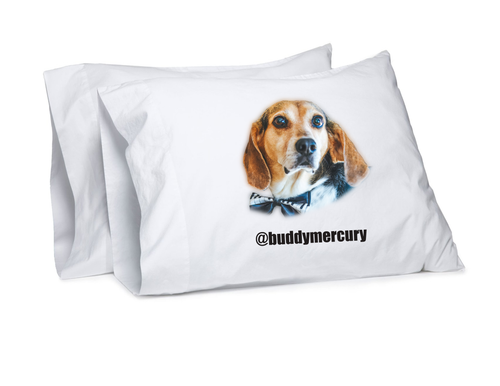 NEW! Buddy Mercury pillow case