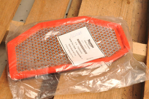 NOS OEM TRIUMPH T2206602 AIR FILTER -  SPEED TRIPLE 1994-2017