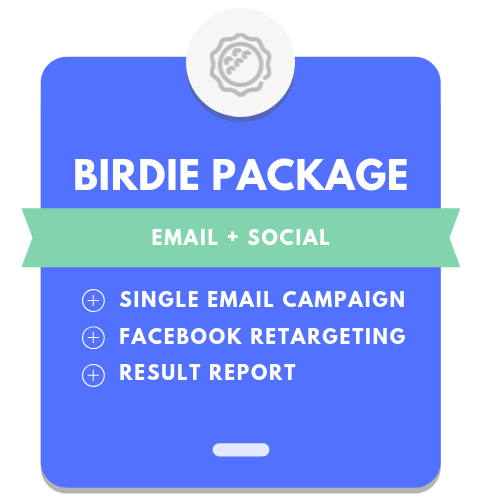 2. Birdie Package: Single Email + Facebook Retageting
