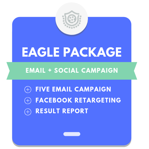 3. Eagle Package: 5 Email Campaign + Social Retargeting