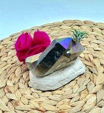Load image into Gallery viewer, Aura Rainbow Quartz Crystal Air plant- Perfect gift!