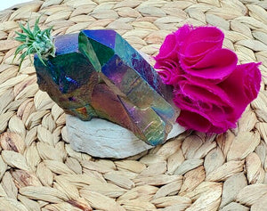 Aura Rainbow Quartz Crystal Air plant- Perfect gift!