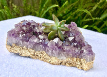 Load image into Gallery viewer, Amethyst Succulent Planter w/Gold, Silver, or Rose Gold Leaf detail- Perfect gift!