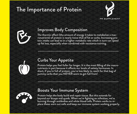 the importance of protein infographic by PR supplement