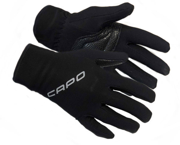 Winter Wind Gloves
