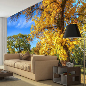 Custom 3D Photo Wallpaper Wall Painting Forest Park Nature Landscape Living Room Bedroom Background Mural Wall Paper De Parede - WallpaperUniversity