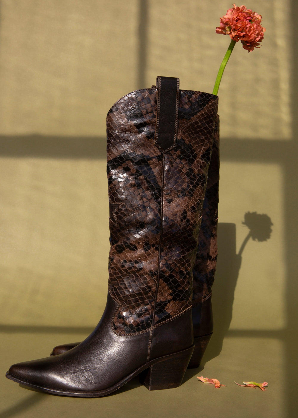Admirable - Brown Leather/Python - cara cara