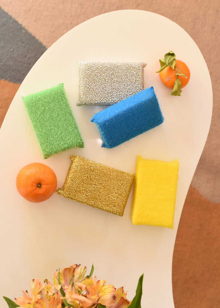 Scourer Sponge - Set of 5 - cara cara