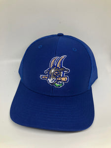 Yard Goats  Little League Hat