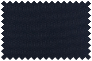 Navy Nailhead Pants