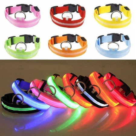 WantsiePet Safety LED Light Up Dog Collar - Flashes in the Dark-Collars-TheWantsies.com