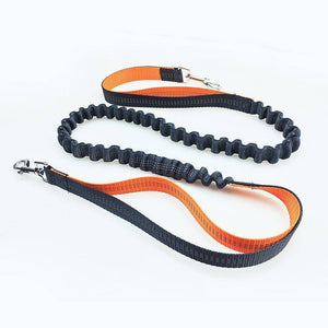 WantsiePet Waterproof Reflective Handsfree Bungee Dog Leash-Pets-TheWantsies.com