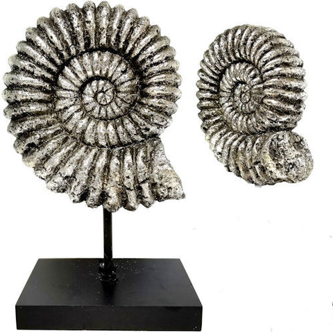 Pella Goods - Seashell Sculpture With Chrome Finish,Nautical Decor-